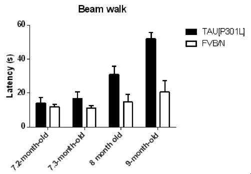 beam walk