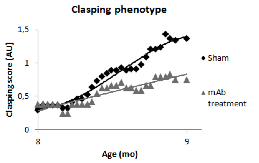 Clasping phenotype